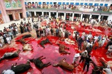Festa do Sacrifício Eid al Adha