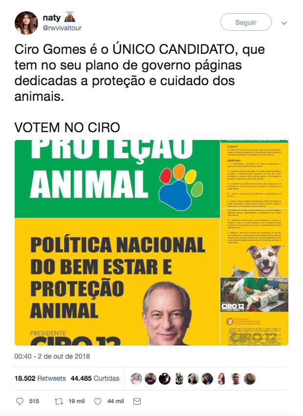 ciro_animais