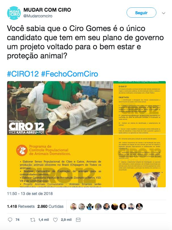 ciro_animais__